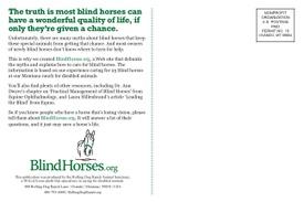 Blind_horses_postcard_2