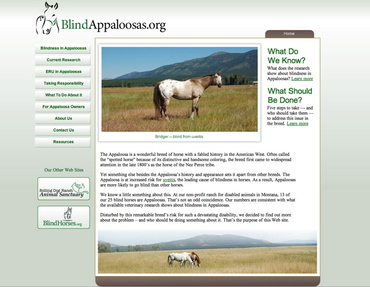 Blind_appaloosas_screen_shot_3