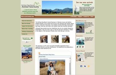 New_web_site_screenshot