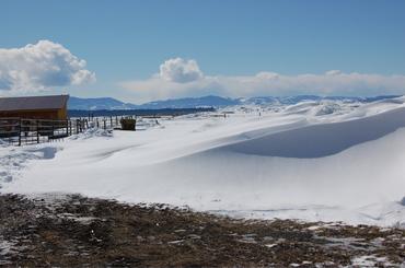 Snowdrift_3