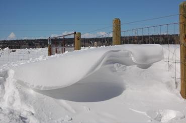 Snowdrift_6