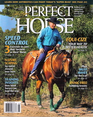 Perfect_horse_cover