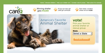 Care_2_animal_shelter_contest