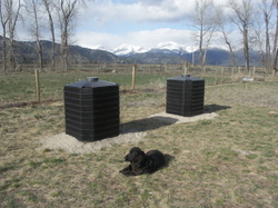Allie_and_compost_bins