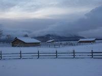 Barns_in_snow_nov_05