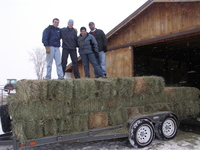 Hay_moving_day_jan_28_2006