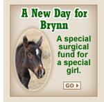 Th_support_brynn_2