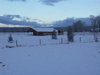 Widgets_house_in_snow_nov_05